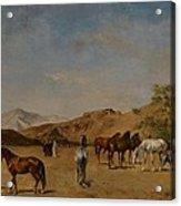 An Arabian Camp Acrylic Print by Eugene Fromentin