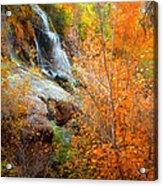 An Autumn Falls Acrylic Print