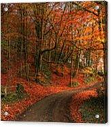 An English Autumn Acrylic Print