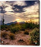 An Evening In The Desert  Acrylic Print