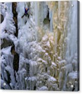An Ice Climber Ascends A Frozen Acrylic Print