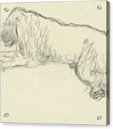 An Illustration Of A Dog Acrylic Print