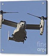An Mv-22b Osprey Prepares For Landing Acrylic Print