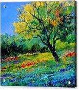 An Oak Amid Flowers In Texas Acrylic Print