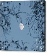 An October Moon Acrylic Print