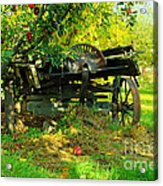 An Old Harvest Wagon Acrylic Print