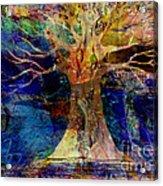 Ancestral Place  Acrylic Print