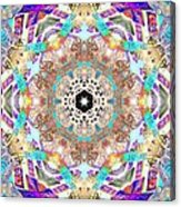 Ancient Awareness Acrylic Print