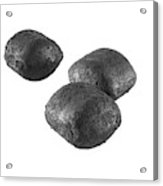 Ancit Fuel Briquettes Acrylic Print