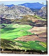 Andalucia Landscape In Spain Acrylic Print by Artur Bogacki