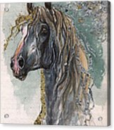 Andalusian Horse 2014 11 11 Acrylic Print