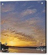 Anderson Island Sunset Acrylic Print