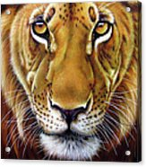 Andre Lion Acrylic Print by Jurek Zamoyski