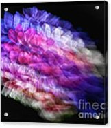 Anemone Abstract Acrylic Print