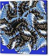 Anemone Acrylic Print by Soumya Bouchachi