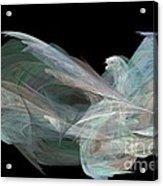 Angel Dove Acrylic Print by Elizabeth McTaggart