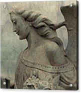 Angel Hair Acrylic Print