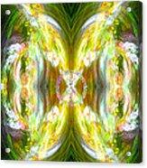 Angel Of Peace Acrylic Print