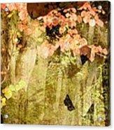 Angel Of The Woods Acrylic Print