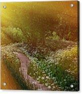 Angel Rays. Follow The Sun Acrylic Print