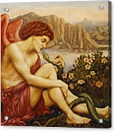 Angel With Serpent Acrylic Print by Evelyn De Morgan