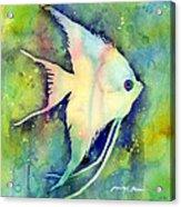 Angelfish I Acrylic Print