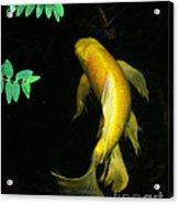 Angels Of Water.... Acrylic Print by Jinx Farmer