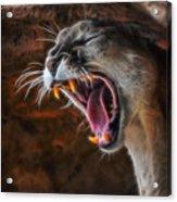 Angry Cougar Acrylic Print