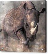Angry Rhino Acrylic Print