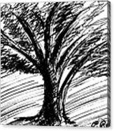 Angry Tree Acrylic Print