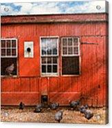 Animal - Bird - Bird Watching Acrylic Print