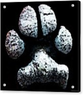 Animal Lovers - South Paw Acrylic Print