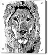 Animal Prints - Proud Lion - By Sharon Cummings Acrylic Print