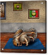 Animal - Squirrel - And Stretch Two Three Four Acrylic Print by Mike Savad
