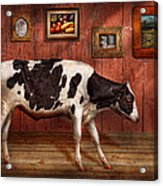 Animal - The Cow Acrylic Print by Mike Savad
