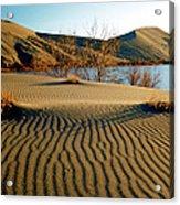 Animal Tracks In The Sand Acrylic Print