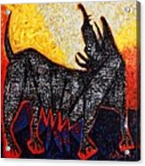 Animalia Canis No. 8  Acrylic Print
