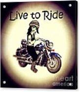 Anime Biker-live To Ride Acrylic Print