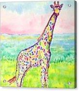 Annabelle Acrylic Print