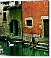 Annecy Swan Acrylic Print