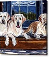 Annie And Her Sisters Acrylic Print