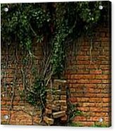 Another Brick In The Wall Acrylic Print