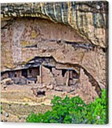 Another Dwelling On Chapin Mesa In Mesa Verde National Park-colorado  Acrylic Print