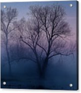 Another New Day Acrylic Print