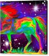 Another Rainbow Stallion Acrylic Print