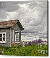 Another Spring Acrylic Print by Charline Xia
