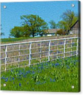Another Spring Old And New Acrylic Print
