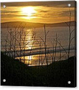 Another Sunset At Bodega Acrylic Print