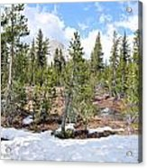 Another Winter Passes In The Yosemite High Country Acrylic Print