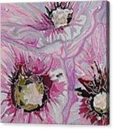 Ant Exploring Hollyhock Acrylic Print by Jo Anne Neely Gomez